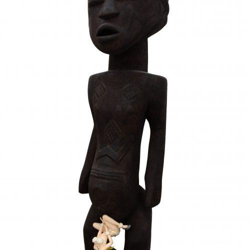 进化-卢巴男性像,夏洛特·德诺阿贵宾犬